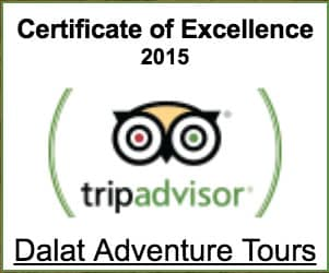 certificate excellent 2015