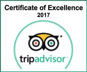 certificate excellent 2017