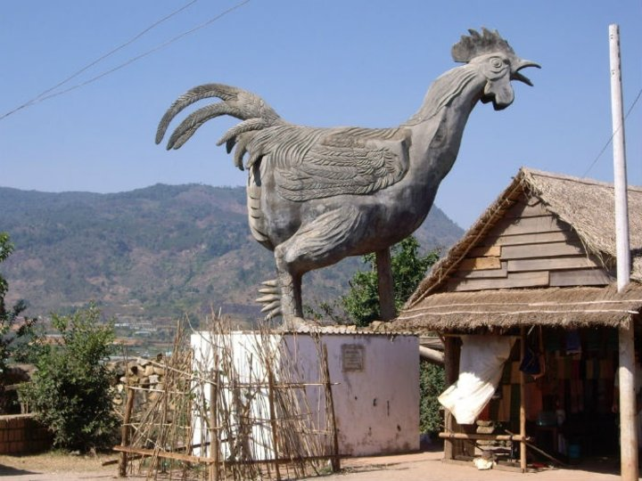 chicken-village-1